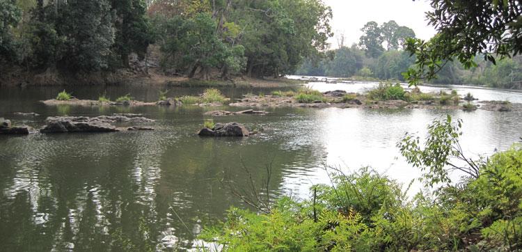 India Fishing Report