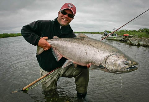 Holding a big King notice the spey rod in the picture, Alaska West is perfect water for spey casting at King Salmon