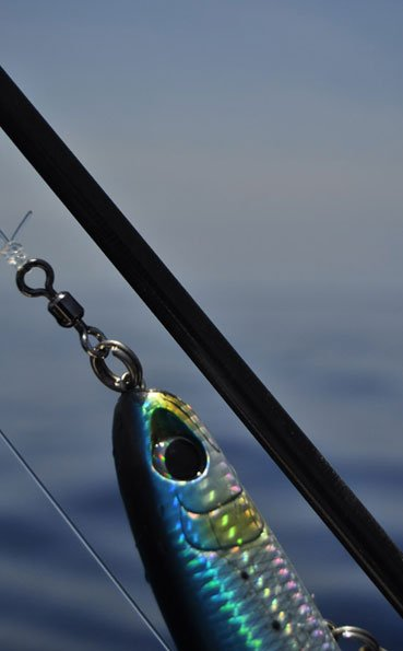 Close up of the lures we use Andaman Fishing Report