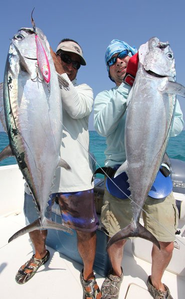 Two Dogtooth tuna being held up for the camera