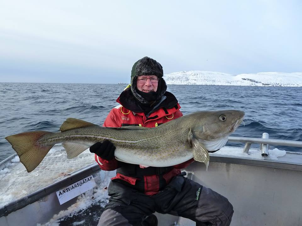 Fishing Report Norway Live from Soroya