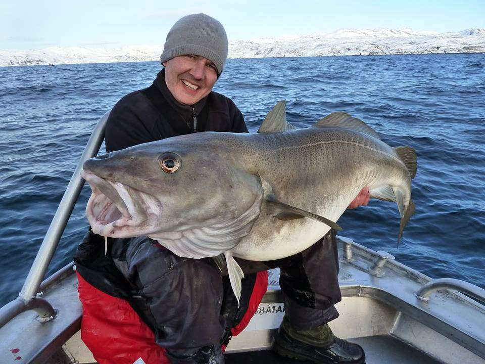 Head Fishing Report Norway Guide holding a big Cod