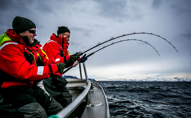 Fishing report Norway of two bent rods
