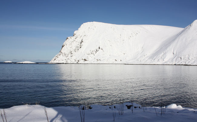 The perfect days Fishing report Norway