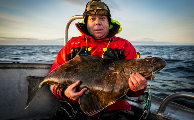Baby Halibut being held by angler on our Fishing report Norway