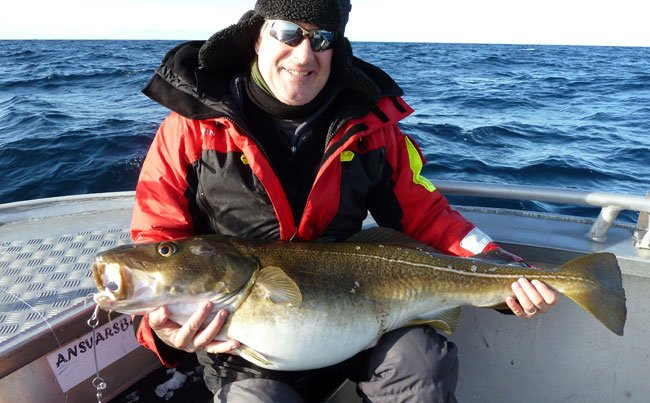 just a little Fishing report Norway of some smaller cod