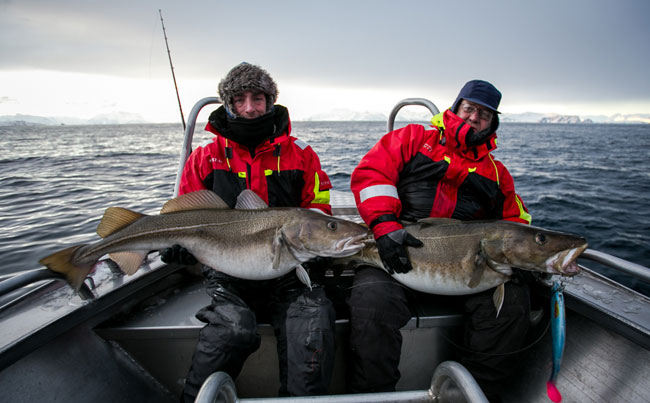 Norway Fishing Report of two very big cod caught together