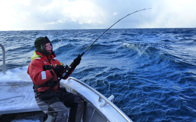rough conditions at sea Norway Fishing Report