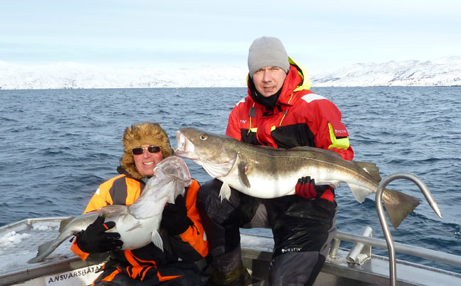 Two Cod for our Norway Fishing Report