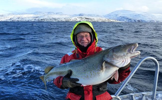 Man clutching a massive Cod Norway Fishing Report