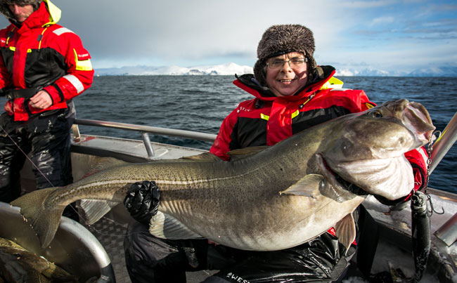 His prize was a 67LB Cod Norway Fishing Report