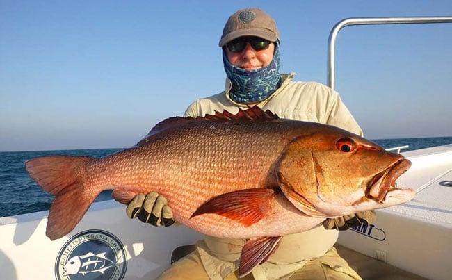 Brightly coloured Snapper Fishing Report Sri Lanka