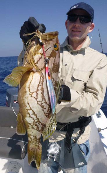 Reef grouper Fishing Report Sri Lanka