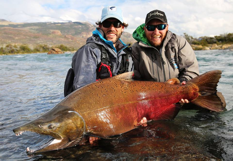Amazing new king salmon fishing argentina for Best time to fish today