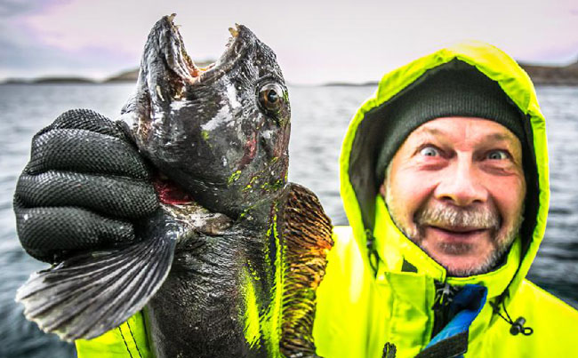 Man holding a wolfish in our Norway Fishing report