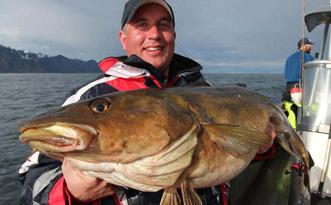 This mans biggest Cod caught from Norway Fishing report Lofoten