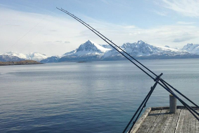 What a view of the fjords in our Fishing Report Norway