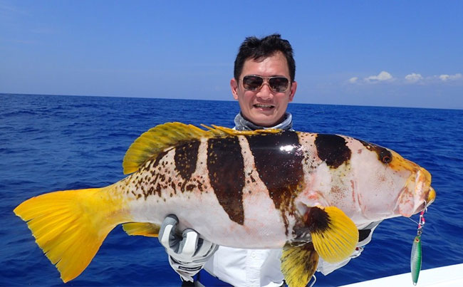 A weird looking grouper SriLanka Fishing Report