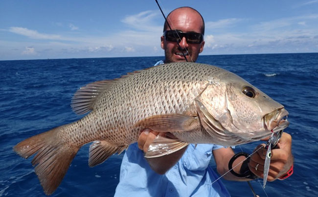 SriLanka Fishing Report of so many different species