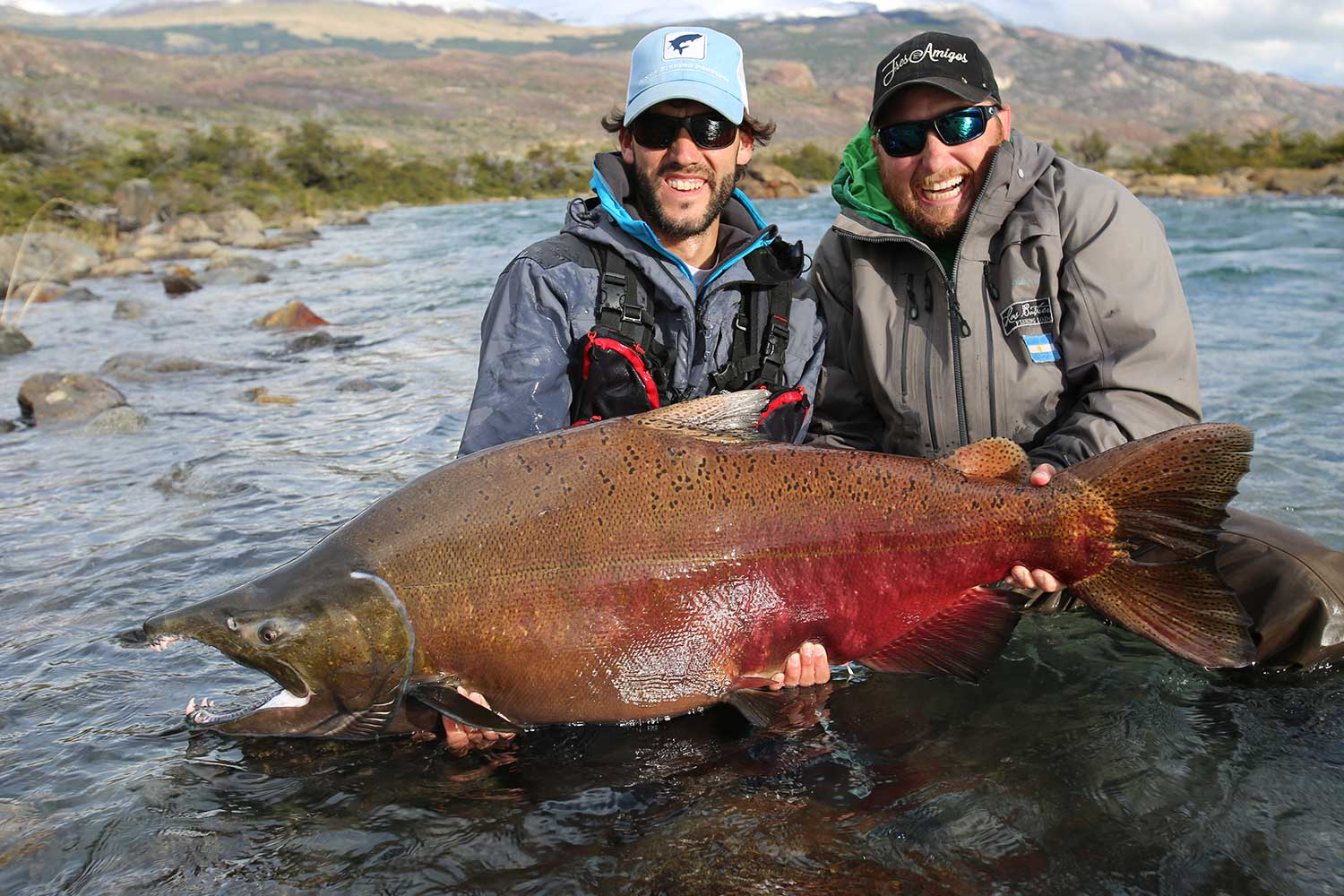 just look at the size of these fish King Salmon Argentina
