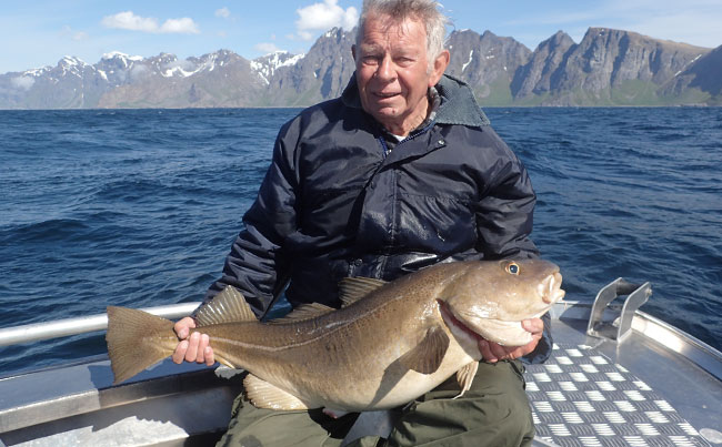 Fun sized Cod Fishing Report Norway Hosted