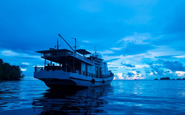 Live aboard mothership Indonesia Fishing Report