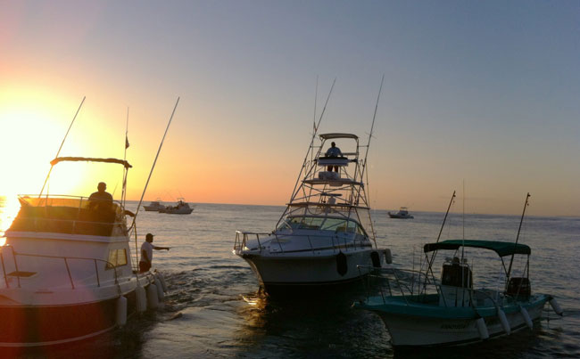 our marlin boats going out Mexico Fishing Report