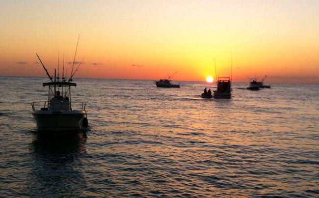 Sunrise over Sea of Cortez Mexico Fishing Report