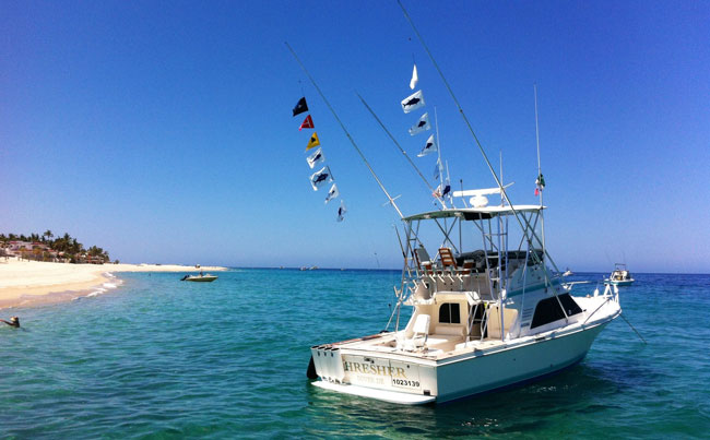 Mexico Fishing Report of our big game boats