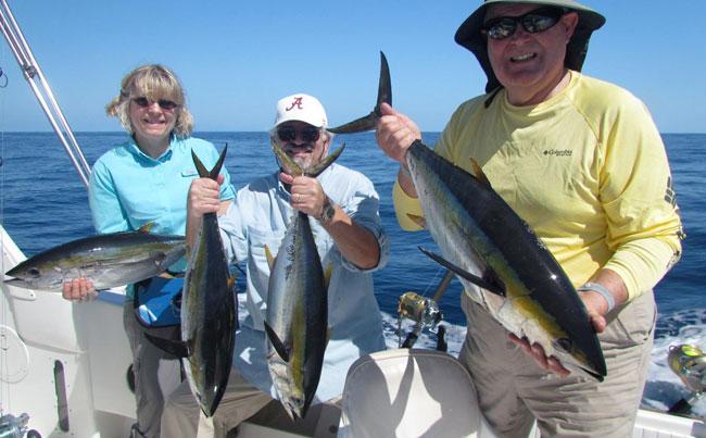 Mexico Fishing Report of loads of tuna around