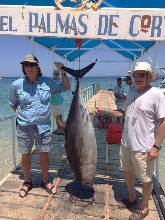 A big tuna caught from our Mexico Fishing Report