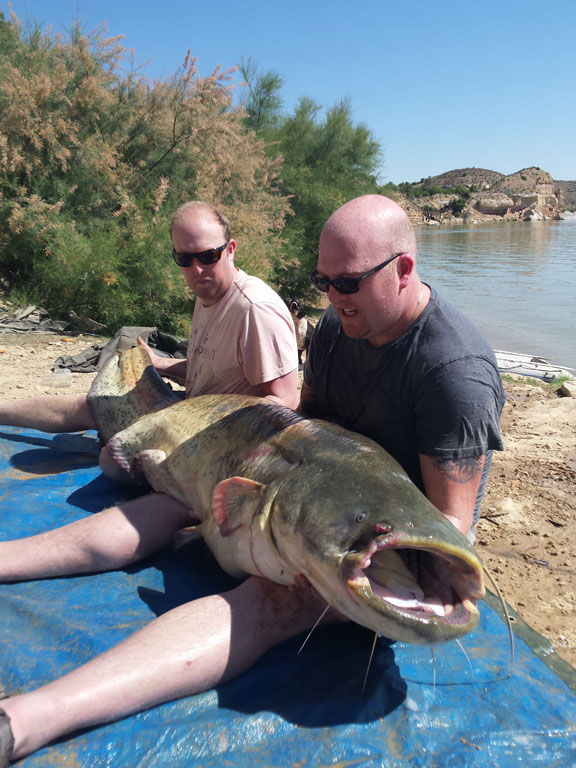 Spain Fishing Report of man holding a big catfish