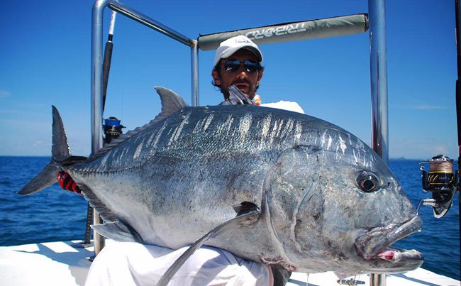 Stunning picture of huge GT Sri Lanka Fishing Report