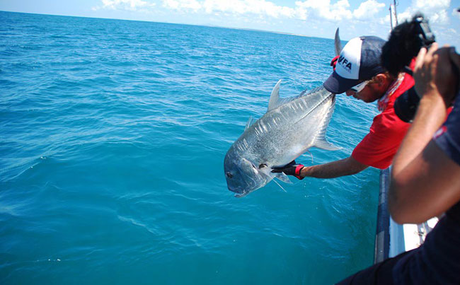 Catch and release GT Sri Lanka Fishing Report