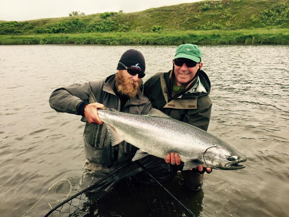 a real bright chrome king salmon caught fly fishing with sportquest holidays