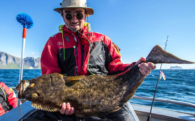 This Fishing Report Norway is full of released Halibut
