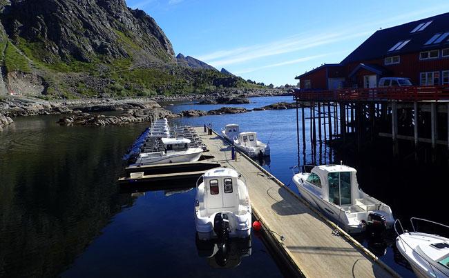 Fishing Report Norway on our June Lofoten Norway
