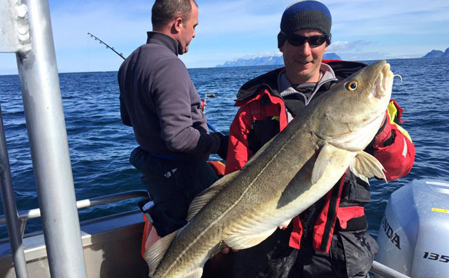 What a great start and a good Fishing Report Norway for cod