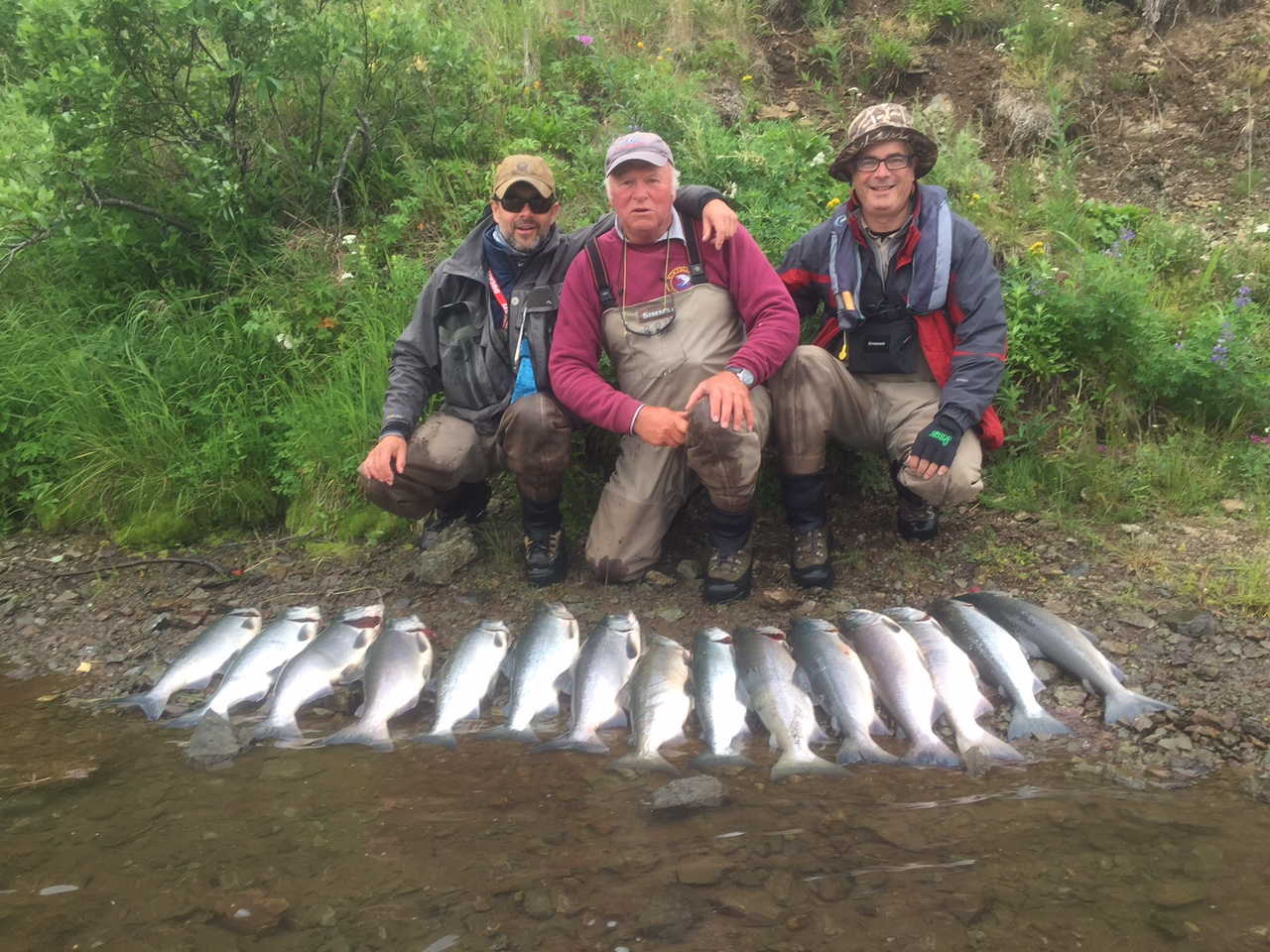 not bad for a morning fly fishing for salmon in alaska
