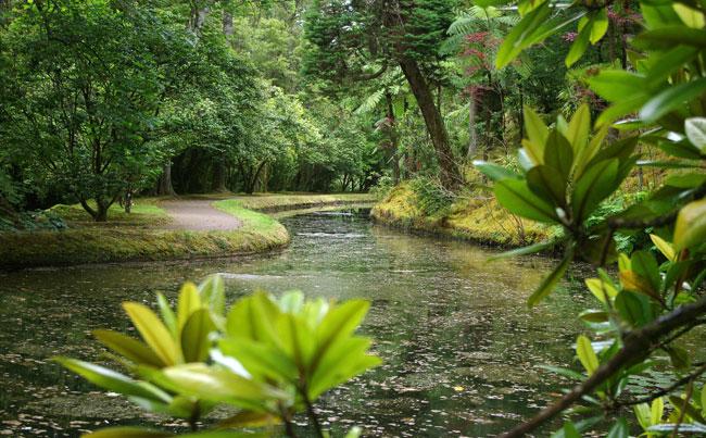Stunning gardens in Azores fishing report