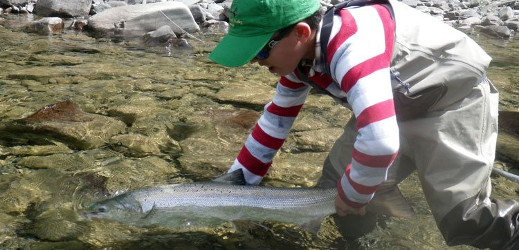 Atlantic Salmon fishing report canada