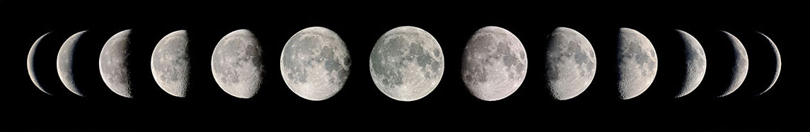 Check out our moon phases
