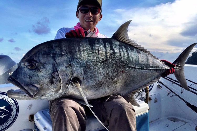 A very dark GT caught from Andaman Fishing Report