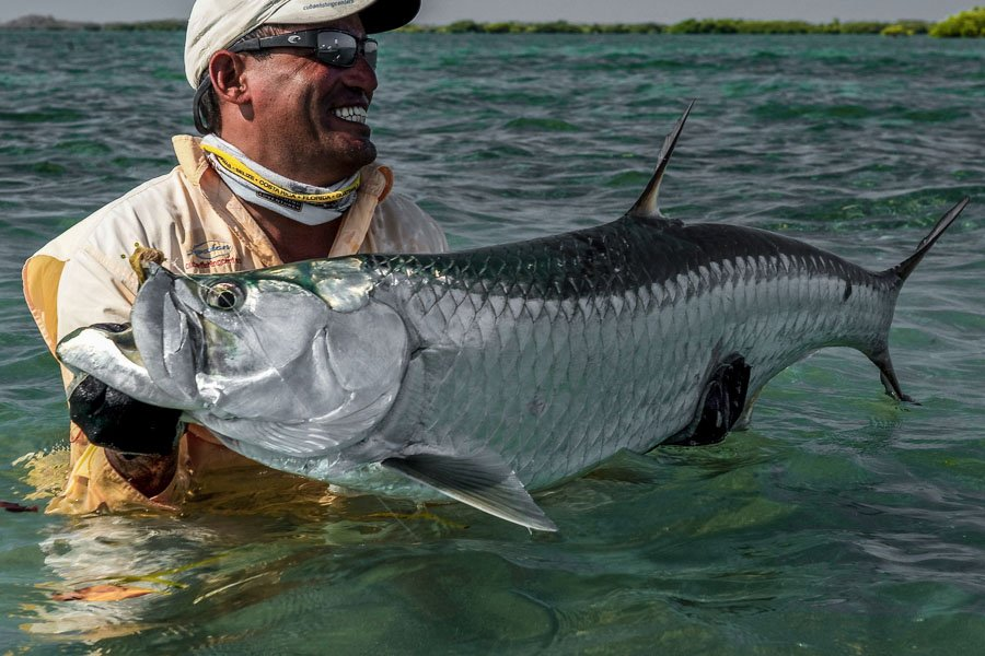 b16fd3f688 Saltwater Fly Fishing Cuba