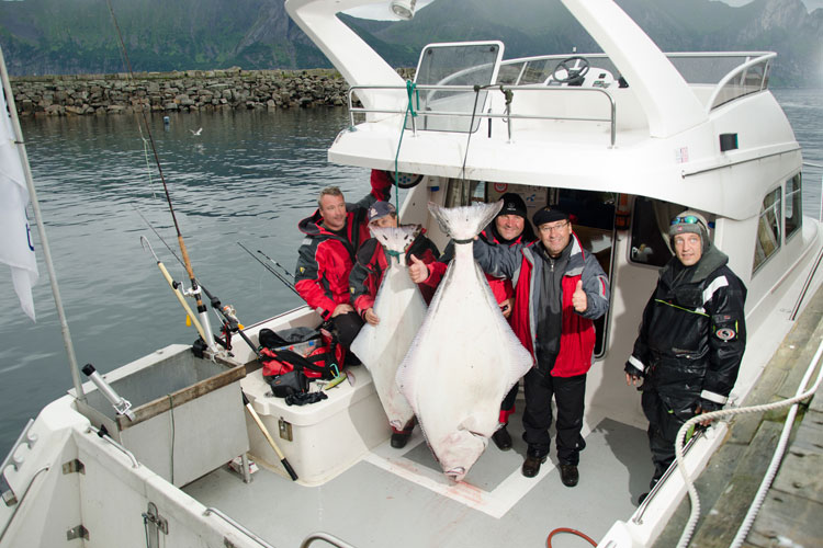 Family Cod & Halibut Fishing Mefjord Norway