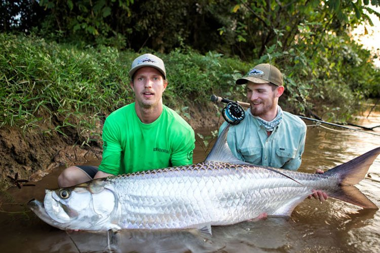fly fishing tarpon costa rica sportquest holidays