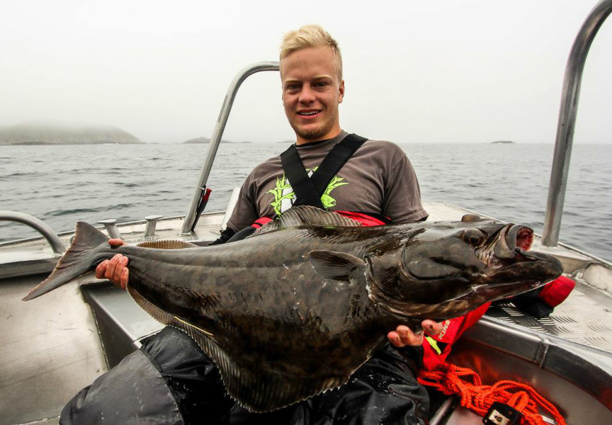 Halibut & Plaice Fishing Lofoten