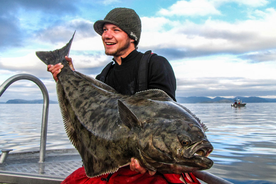 Halibut & Coalfish Fishing Å