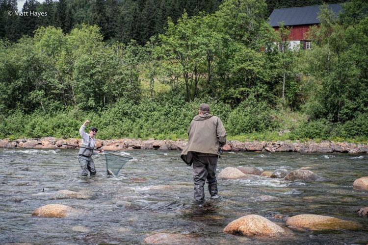Atlantic Salmon Fishing Norway