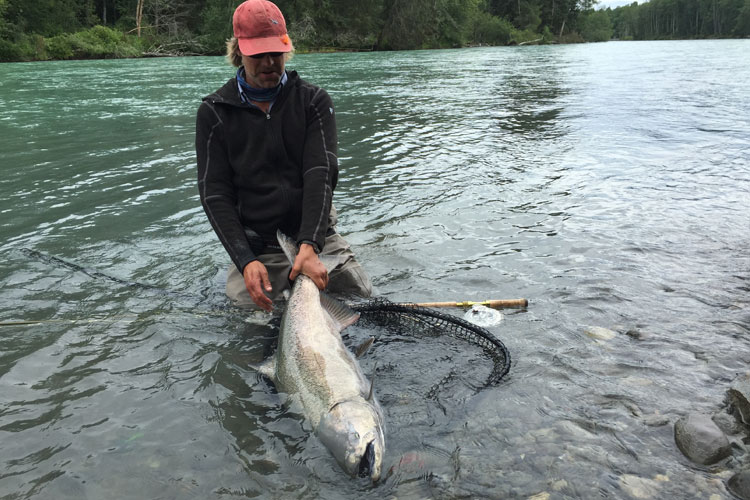 hosted-fly-fishing-canada-kalum-river-lodge-26-07-2016-2